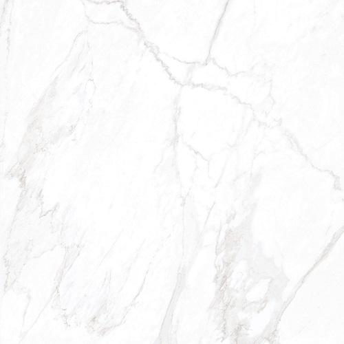 Ascale Grassi White